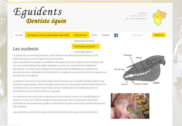 Eguidents