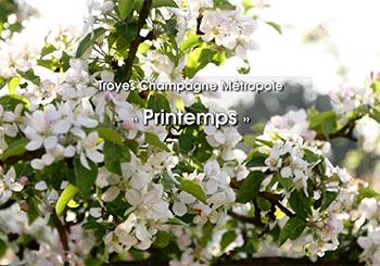 « Printemps » – Troyes Champagne Tourisme
