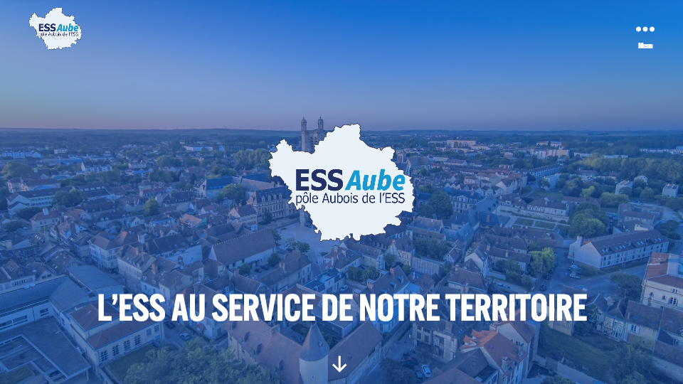 ESS - Aube Page d'accueil